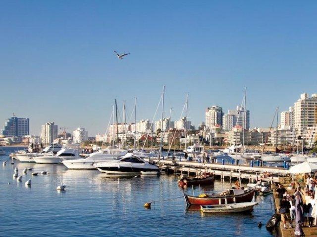 O que fazer em Punta del Este: Porto de Punta del Este