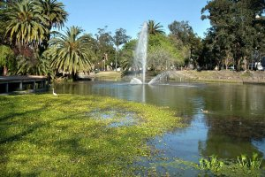 Montevidéu em fevereiro: Parque Rodó
