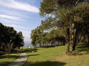 Montevidéu em novembro: Parque Vaz Ferreira