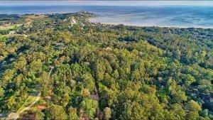 Punta del Este em fevereiro: parque Arboretum Lussich