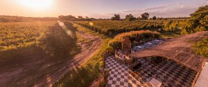 Vinícolas em Montevidéu: Bodega Narbona Wine Lodge