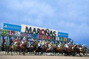 Hipódromo de Maroñas em Montevidéu: corridas