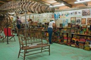 Museo del Mar em Punta del Este: exposição