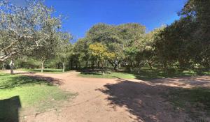 Parque Indígena em Punta del Este